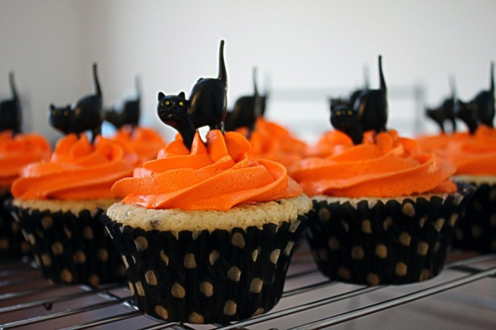 Cupcakes-day-cat7