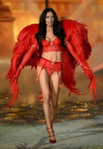 gallery_big_Victorias_Secret_Fashion_2013_Show_Adriana_Lima-400x580
