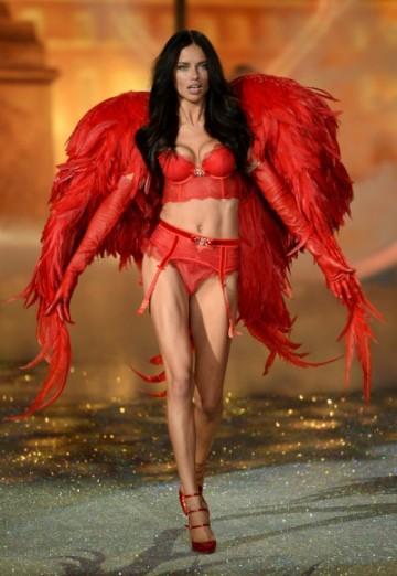 gallery_big_Victorias_Secret_Fashion_2013_Show_Adriana_Lima-400x580